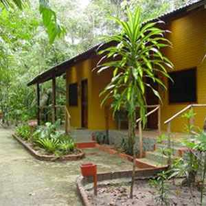 Ecopark Jungle Lodge